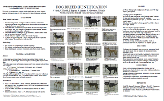 Comparison of Adoption Agency Breed Identification and DNA Breed Identification of Dogs Poster